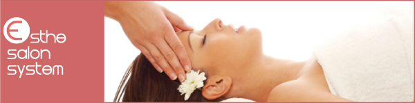 esthe-salon-system